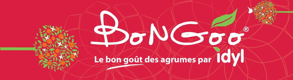 Banniere des recettes de la marque BonGoo