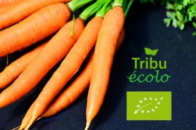 Photo d'une botte de carottes bio de la marque Tribu écolo