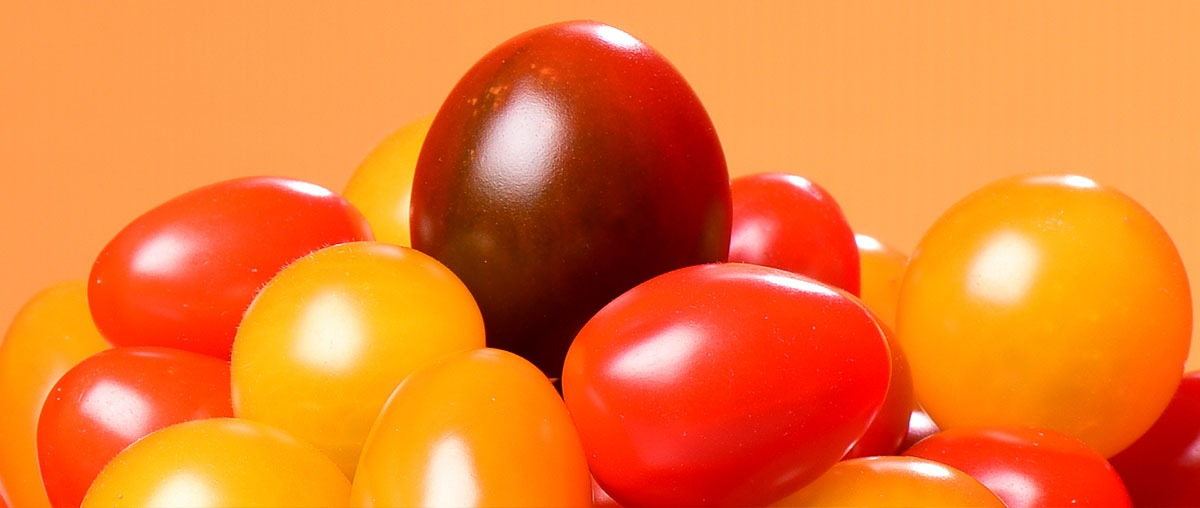 Photo de tomates cerises mélangées multicolores