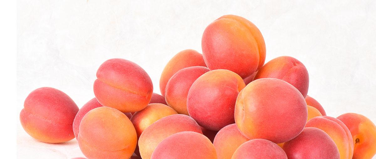 Photo d'abricots de Provence petit format
