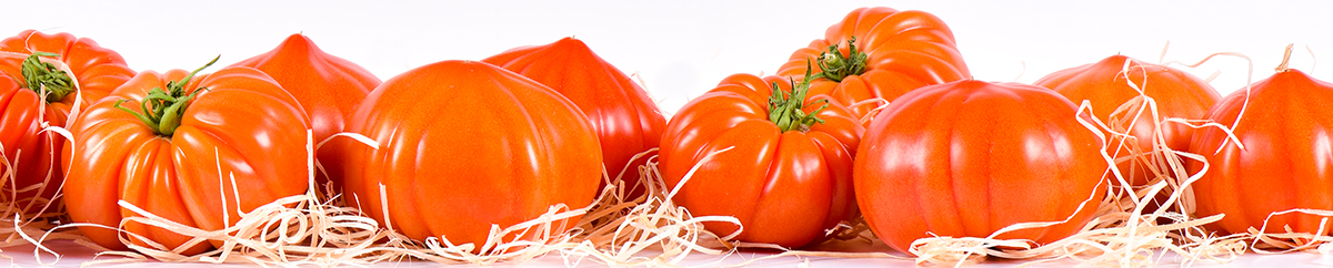 Photo de tomates anciennes de Provence rouges