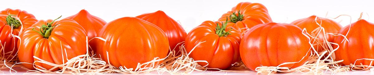 Photo de tomates anciennes de Provence rouges