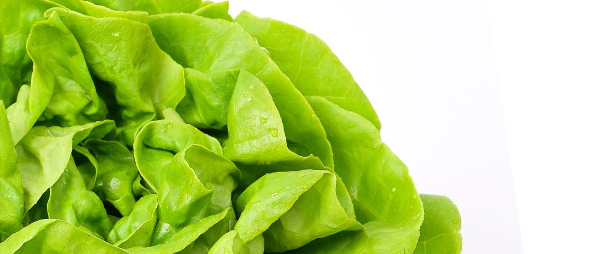 Photo d'une salade de Provence Idyl