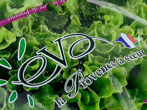 Photo de salades de Provence sous flowpack eva par idyl