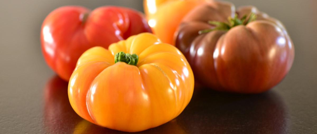 Idyl producteur de tomates en Provence