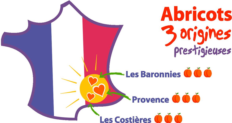 Abricot 3 origines