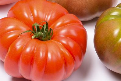 Tomates anciennes de Provence par Idyl