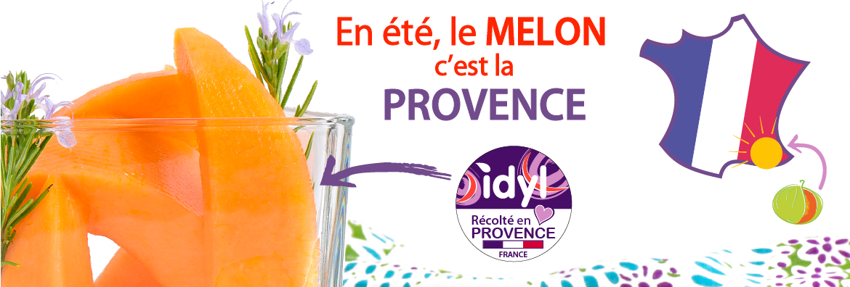 Melon Charentais jaune de Provence par Idyl