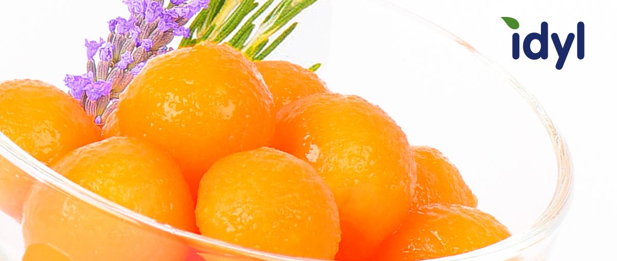 Melon Charentais de Provence producteur