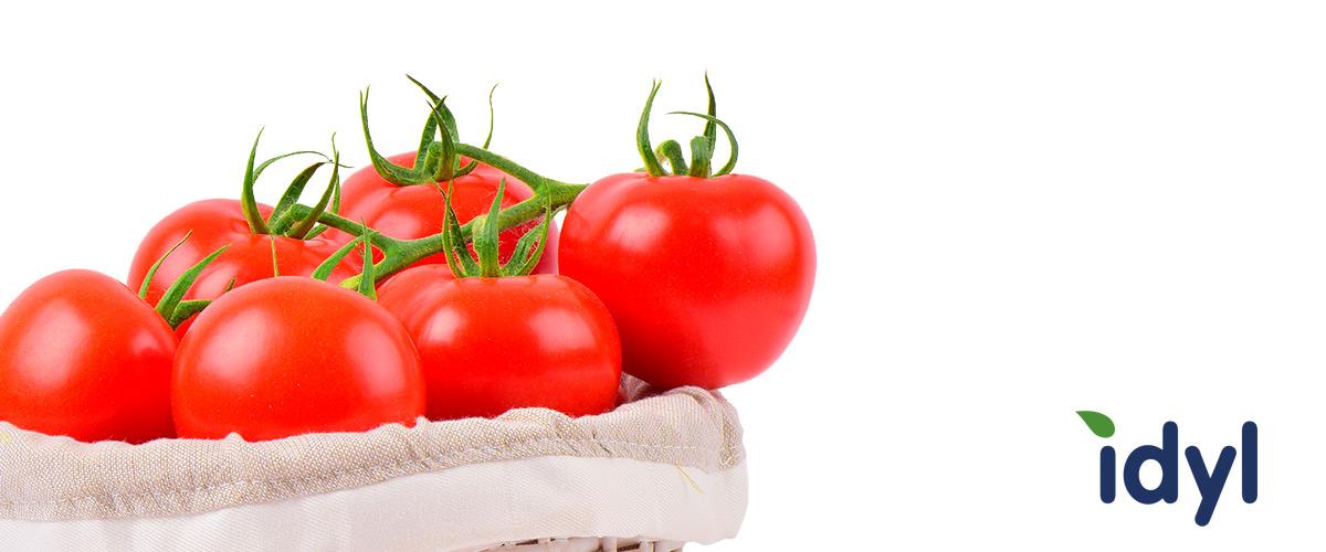 La gamme tomate